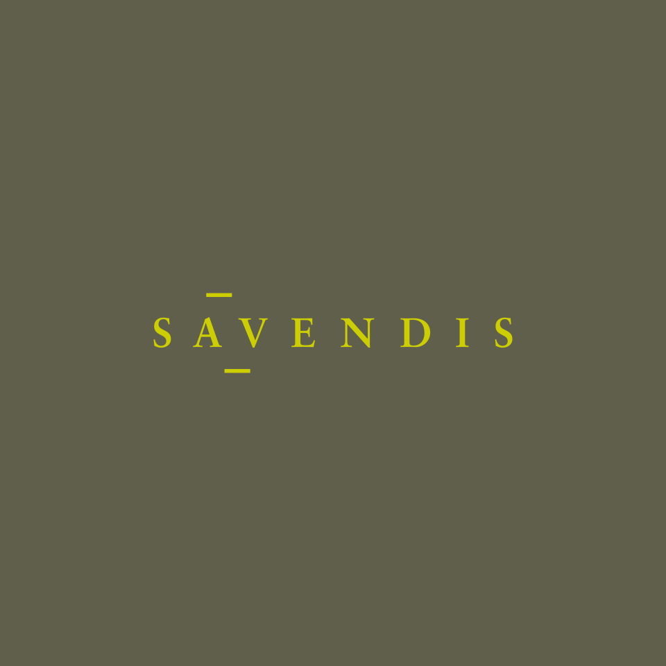 savendis_web_02