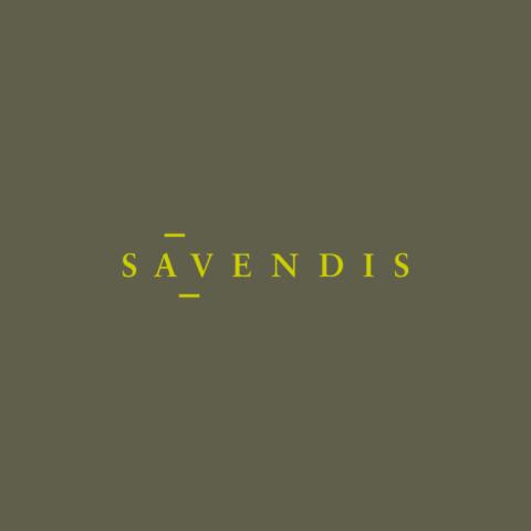 savendis_web_02